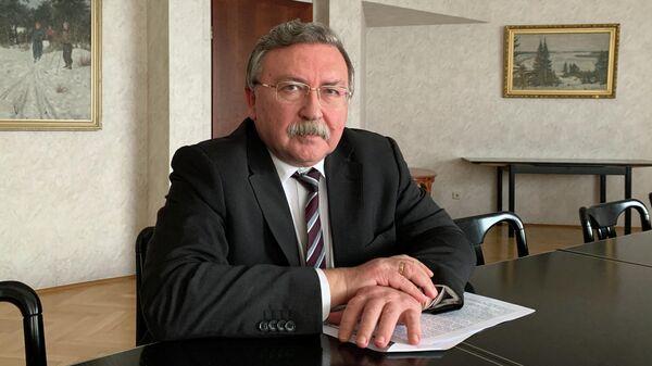 Постоянный представитель Российской Федерации при международных организациях в Вене Михаил Ульянов