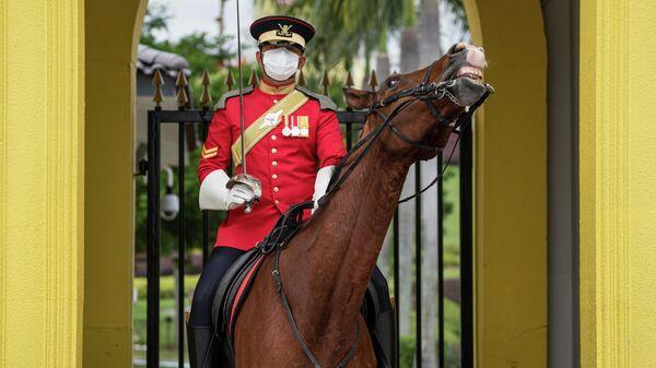 Королевский гвардеец в защитной маске в Национальном дворце в Куала-Лумпуре. 19 февраля 2020 года