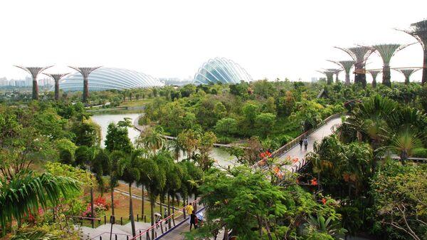 Сады у залива в Сингапуре