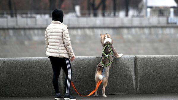 Девушка гуляет с собакой по набережной