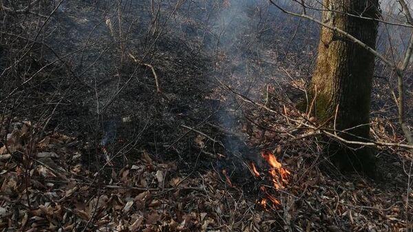 Возгорание сухой травы в Краснодарском крае. 10 марта 2020