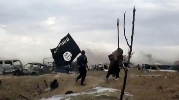 Бойцы Исламского государства (террористическая организация, запрещена на территории РФ)