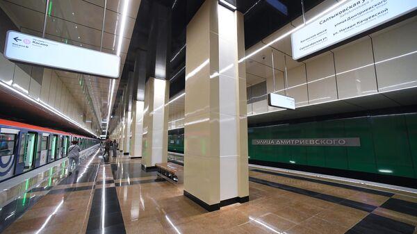 Поезд на станции метро Улица Дмитриевского Некрасовской линии