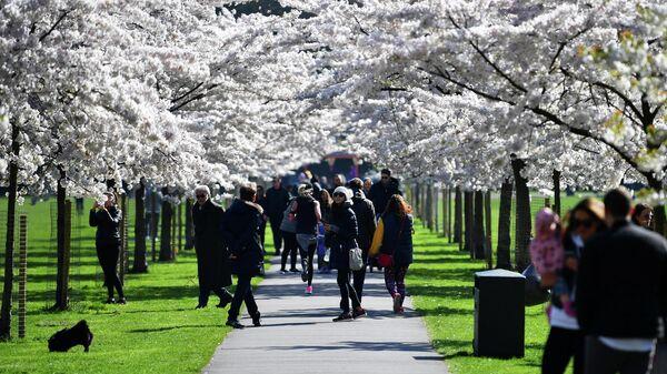 Посетители в парке Баттерси в Лондоне