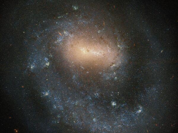Галактика NGC 4618  в созвездии Гончие Псы