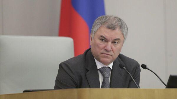 Володин поручил сделать запросы по делу о двойном гражданстве у депутатов