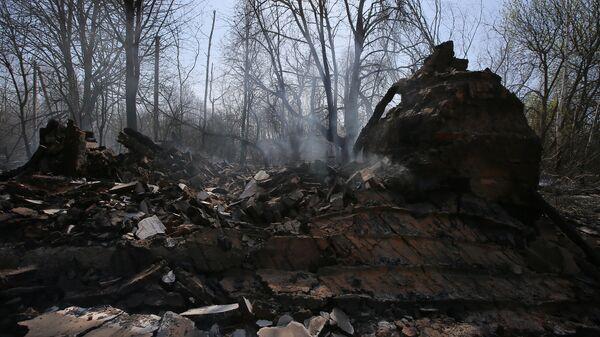 Сгоревший частный дом в результате пожара в зоне отчуждения Чернобыльской АЭС