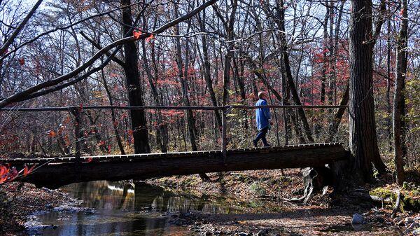 Женщина прогуливается по лесу