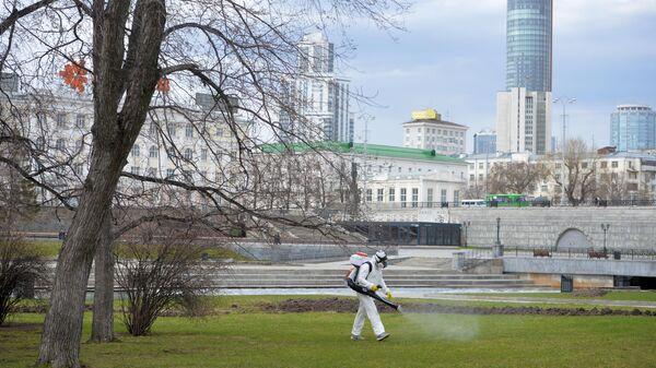 Профилактика распространения клещей в Екатеринбурге