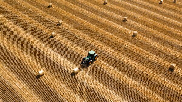 Заготовка рулонов сена на поле в Краснодарском крае