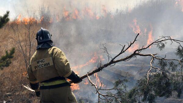 1571049355 0:17:3052:1734 600x0 80 0 0 3513a8d8ca7d2db1ef151a2dd06b85eb - В России за сутки потушили 75 природных пожаров