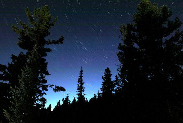 Звездное небо над тайгой в природном парке Ергаки в горах Западного Саяна в Красноярском крае