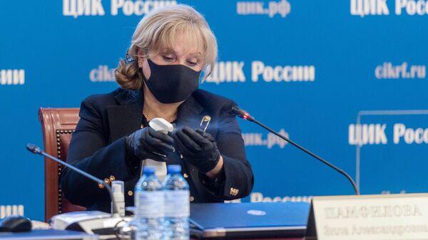 Председатель ЦИК РФ Элла Памфилова на заседании ЦИИК РФ