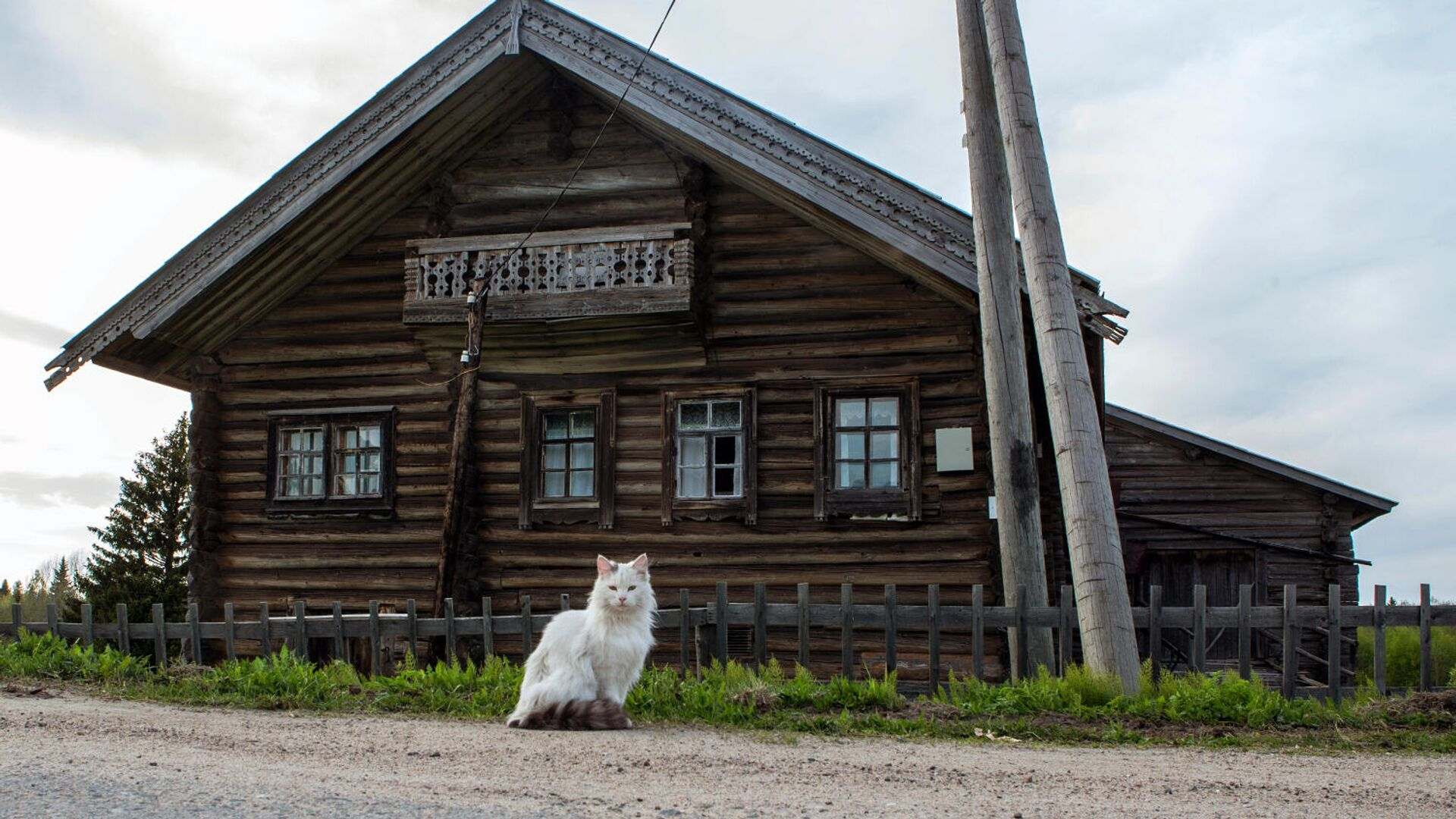 Деревянный дом в деревне - РИА Новости, 1920, 09.11.2020
