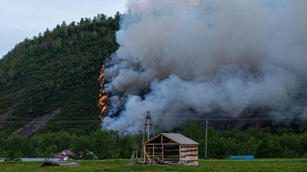 Лесной пожар в районе поселка Эссо Быстринского района Камчатского края