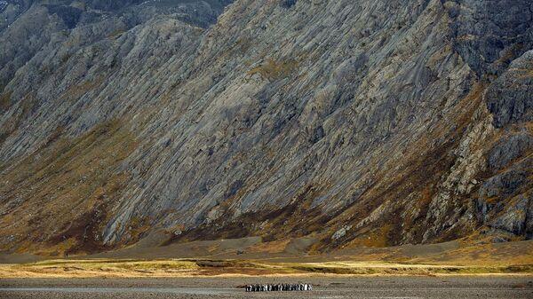 Интрузия сиенита (светло-серое) на острове Кергелен приподнимает базальты океанической коры (темное). Королевские пингвины дают представление о масштабе