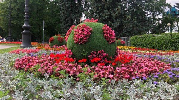Цветочные клумбы в Санкт-Петербурге, похожие на коронавирус