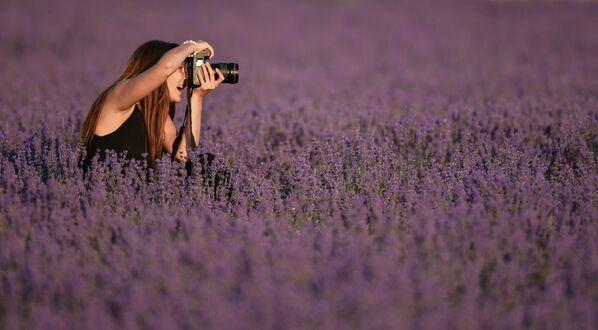 Девушка фотографирует на лавандовом поле в Крыму