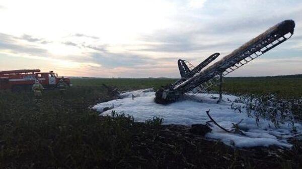 Самолет Ан-2 упал в Нижегородской области
