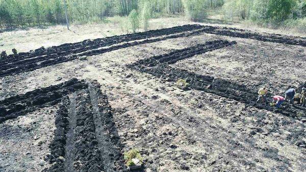 Гегоглиф в Тюменской области