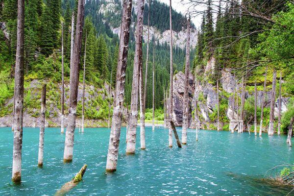 Озеро Каинды в ущелий Кунгей Алатау, Казахстан