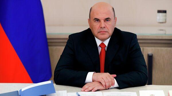 Председатель правительства РФ Михаил Мишустин проводит в режиме видеоконференции совещание с членами кабинета министров РФ