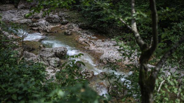 Река Курджипс в Гуамском ущелье в Краснодарском крае.