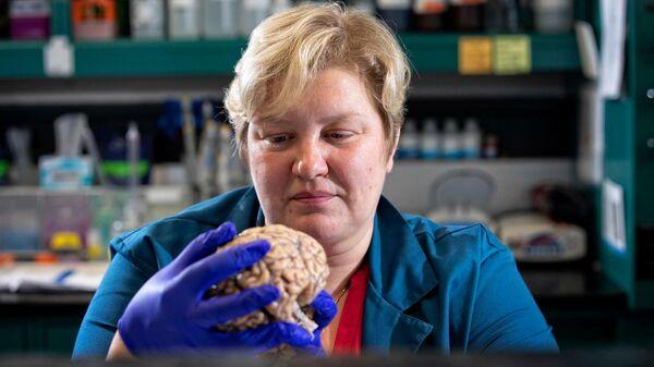 Руководитель исследования Донна Вилкок в своей лаборатории