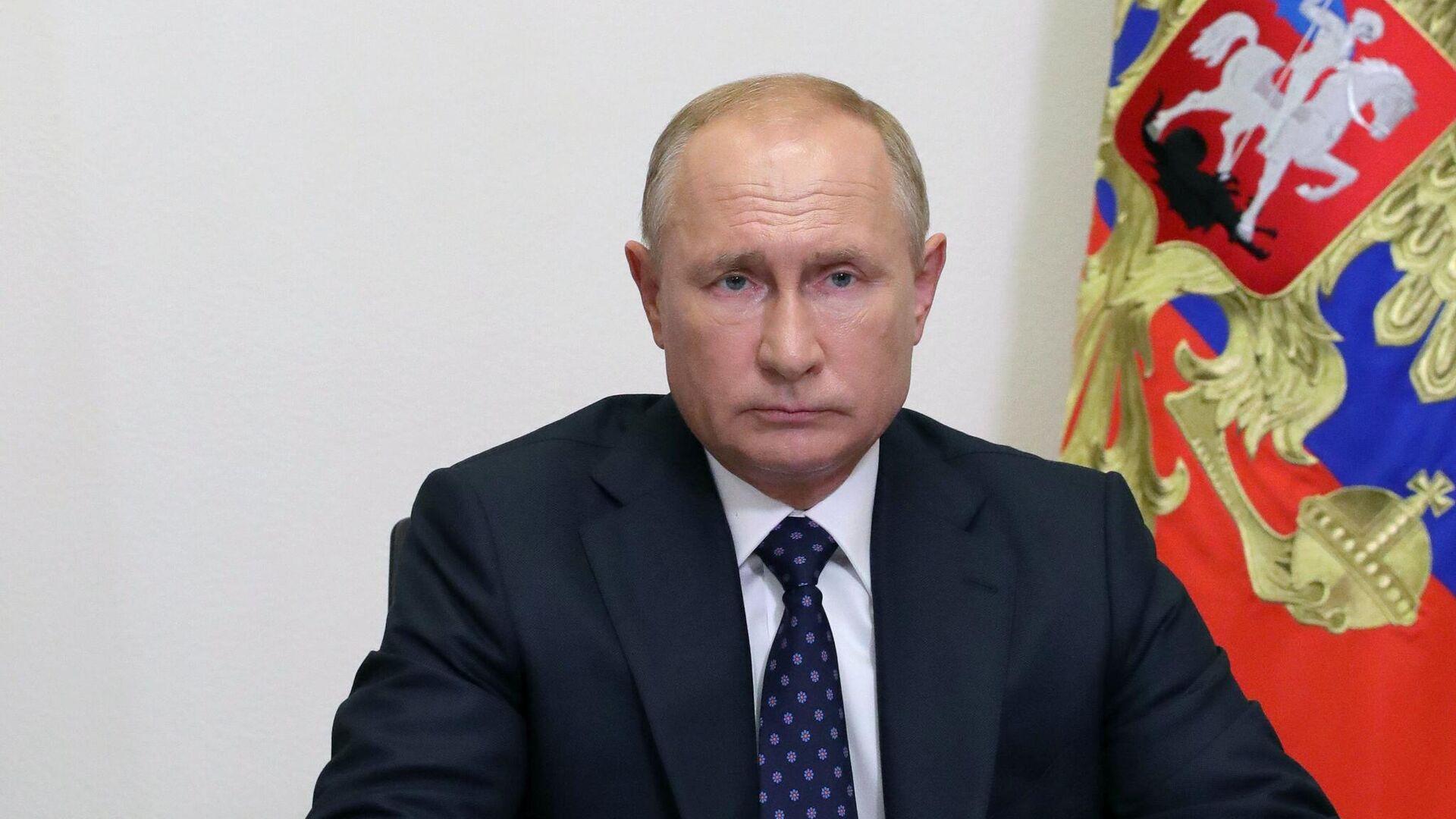 Президент РФ Владимир Путин проводит в режиме видеоконференции совещание с членами правительства РФ - РИА Новости, 1920, 31.08.2020