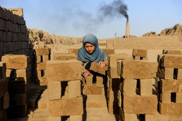 Девушка складывает кирпичи на фабрике в Герате, Афганистан