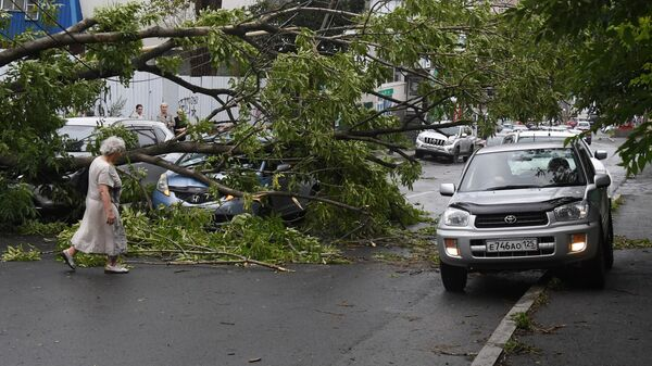 Последствия урагана во Владивостоке