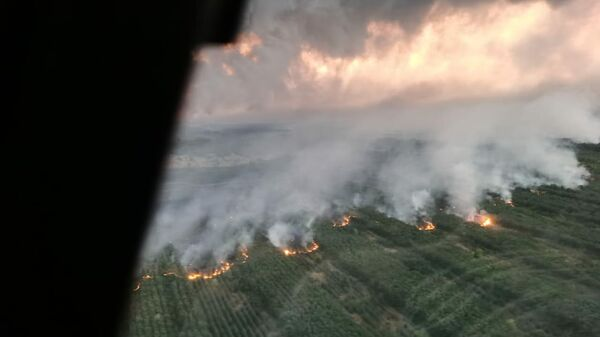 Тушение пожара в Ростовской области