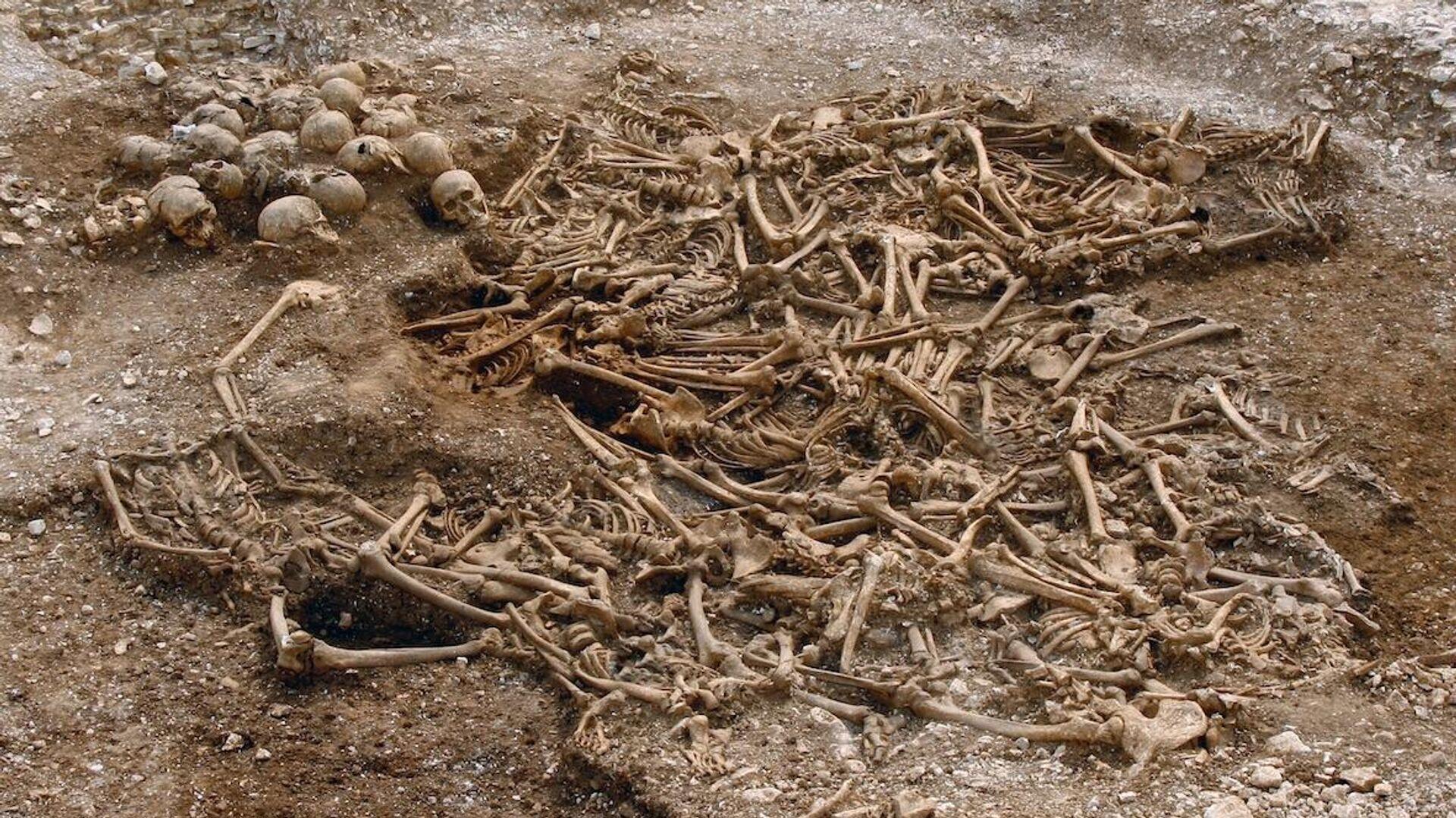 Братское захоронение пятидесяти обезглавленных викингов в в графстве Дорсет, Великобритания - РИА Новости, 1920, 16.09.2020