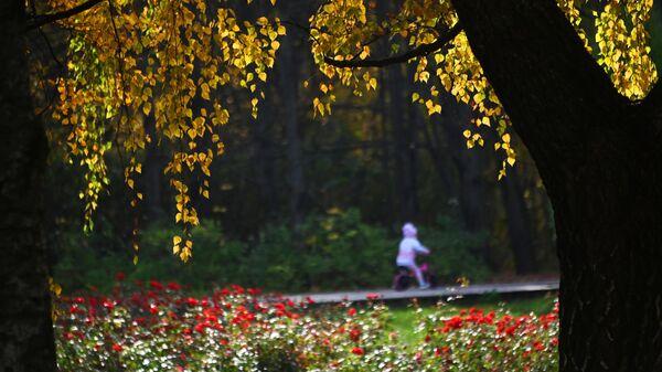 Территория парка имени 50-летия Октября в Москве