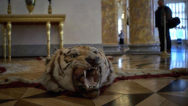 Реставрация Александровского дворца