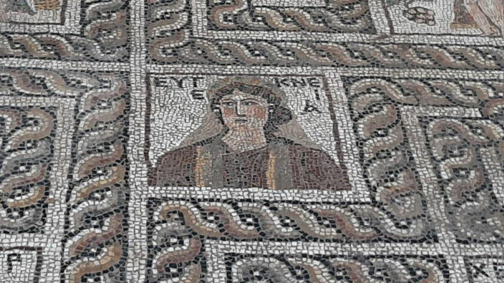 Мозаика, обнаруженная во время раскопок в турецкой провинции Кадирли - РИА Новости, 1920, 12.11.2020