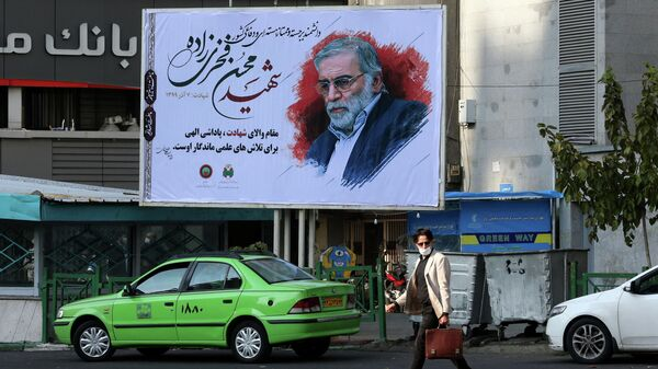 Портрет иранского физика  Мохсена Фахризаде Махабади на одной из улиц Тегерана
