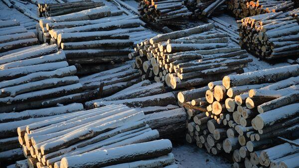 Погрузочная площадка предприятия заготовки и глубокой переработки древесины в Верхней Туре
