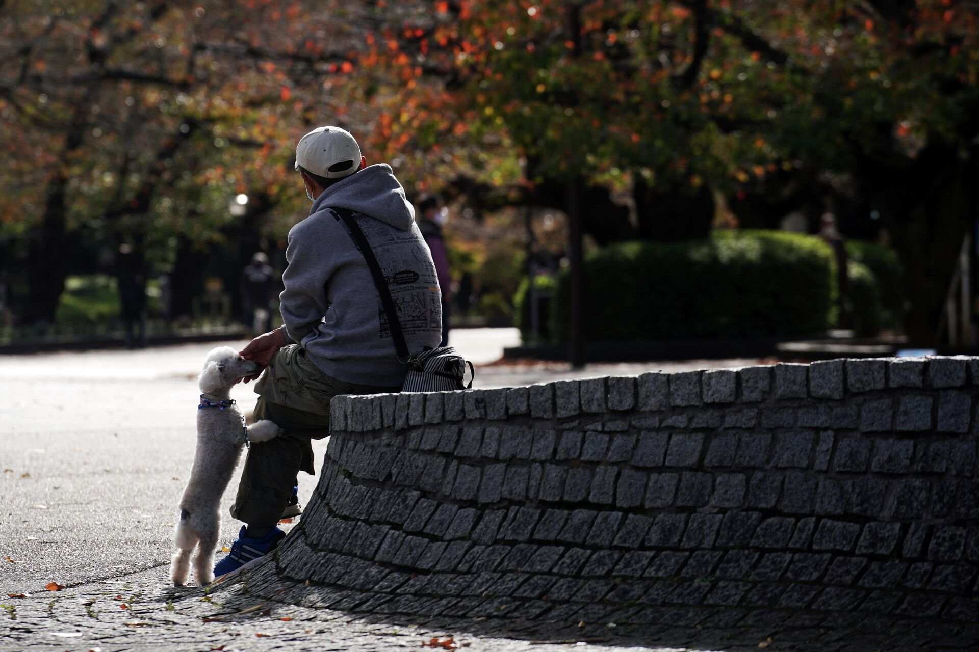 Мужчина в парке в Токио  - РИА Новости, 1920, 11.12.2020
