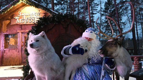 Резиденция Деда Мороза в парке флоры и фауны Роев ручей