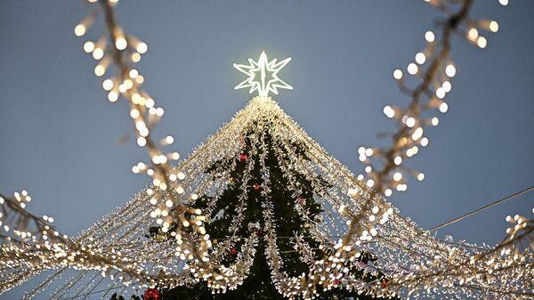 Праздничная инсталляция и новогодняя елка в Москве