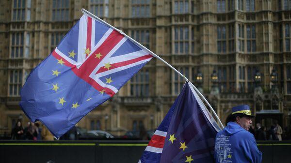 Участник акции протеста против Brexit в Лондоне