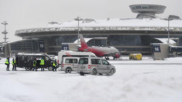 Аэропортовые службы в аэропорту Внуково в Москве