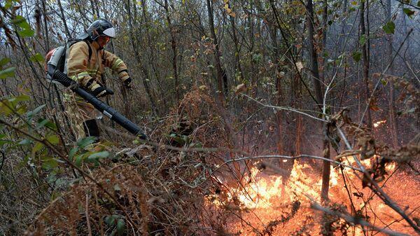 Сотрудник службы спасения города Сочи на месте природного пожара в Лазаревском районе около села Барановка на территории Сочинского национального парка