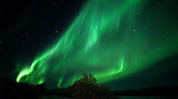 Небо изумрудных оттенков: северное сияние в Мурманской области