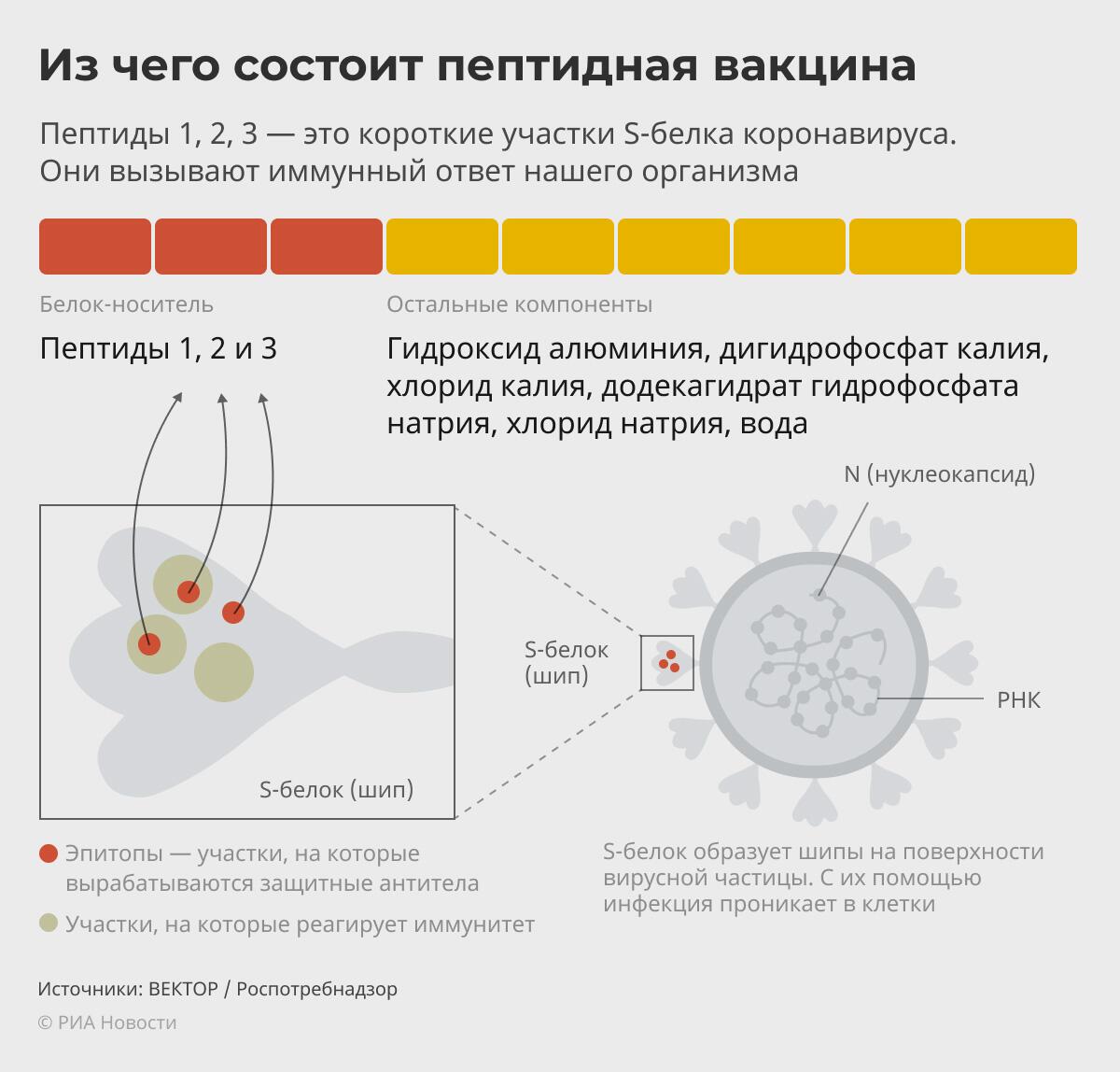 Вакцина ЭпиВакКорона - РИА Новости, 1920, 21.01.2021