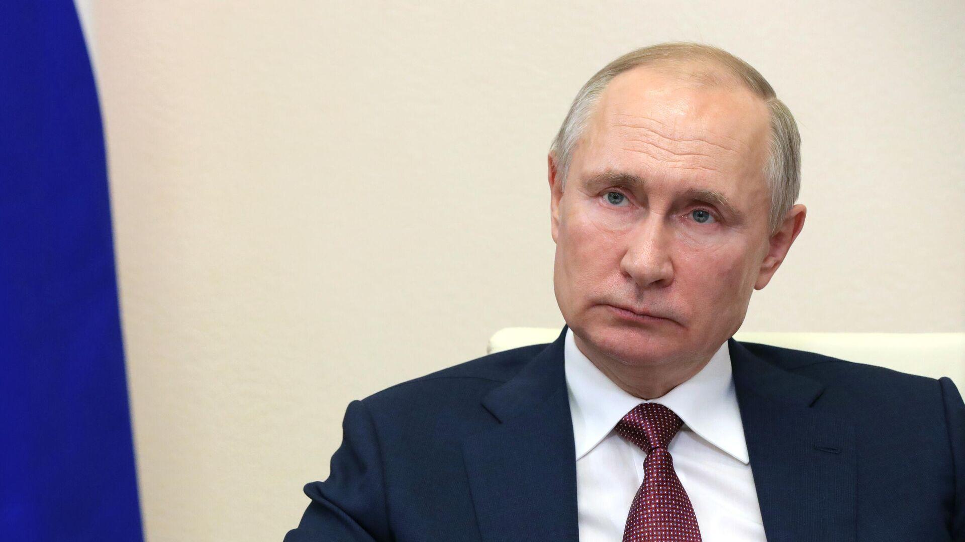 Президент РФ Владимир Путин проводит в режиме видеоконференции совещание с членами правительства РФ - РИА Новости, 1920, 13.01.2021