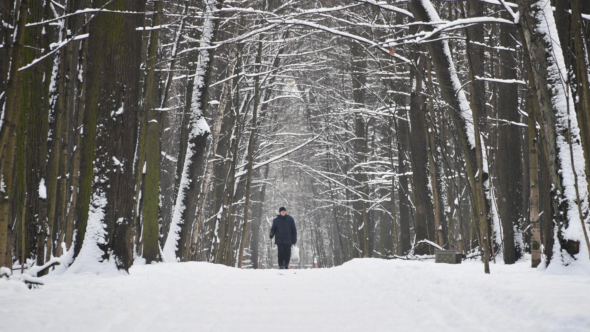 Мужчина в Измайловском парке в Москве - РИА Новости, 1920, 22.01.2021