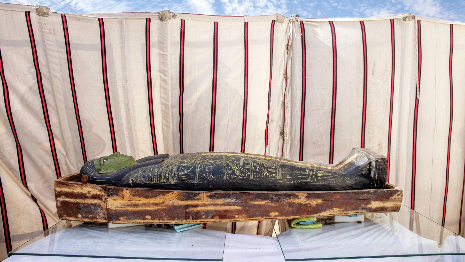 Древний саркофаг, обнаруженный египетским археологом Захи Хавассом и его командой в огромном некрополе в Саккаре, к югу от Каира, Египет - РИА Новости, 1920, 20.01.2021