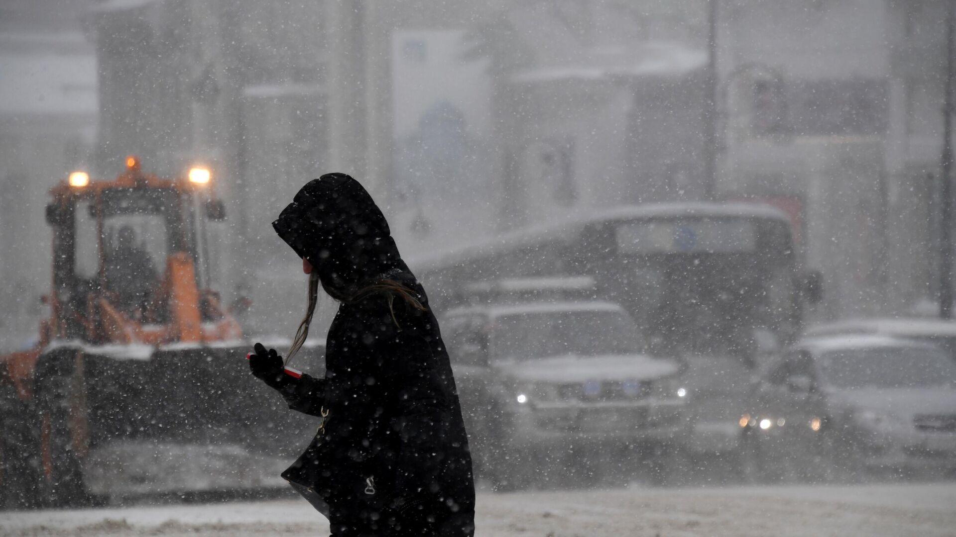 Снегопад - РИА Новости, 1920, 08.02.2021